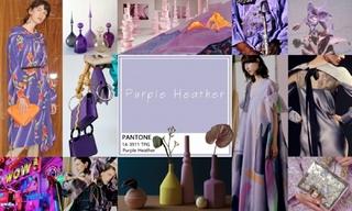 2020春游色彩:百花紫