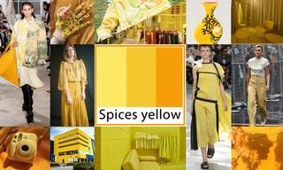 2020春夏色彩:异域香料