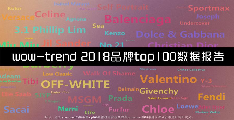 2018品牌 top 100 数据报告